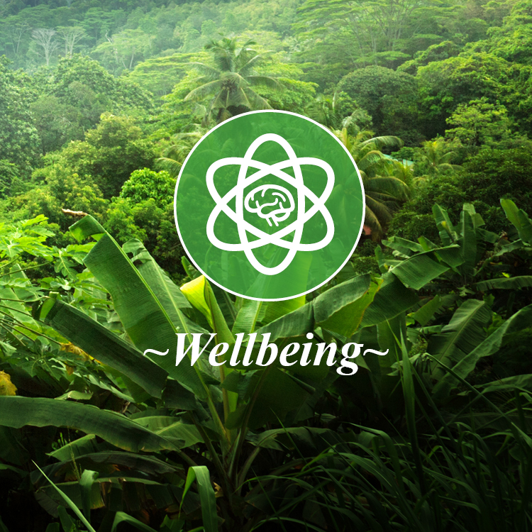 Copyright Studio Diba Salam Ltd 2018 - Core Values_Wellbeing.jpg