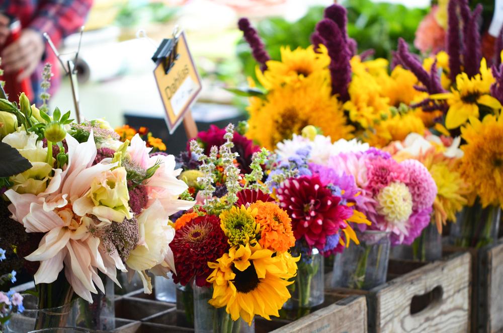 Farmers-Market-Flowers-Megan-Gehring.jpg