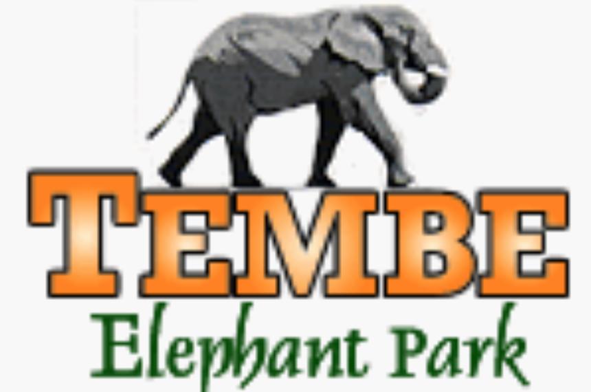 Tembe Logo.png