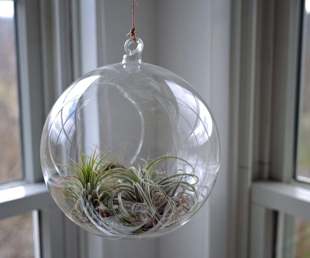 glass-bauble.png