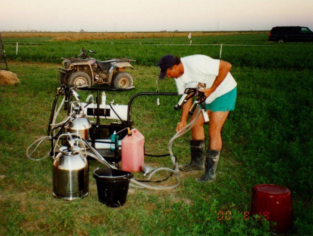 2000.8.3 field milkn.jpg