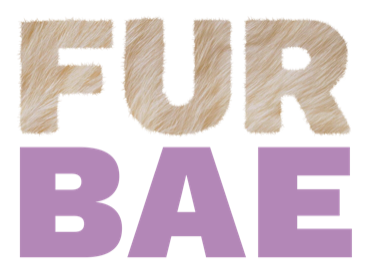 FurBae-Colour.png