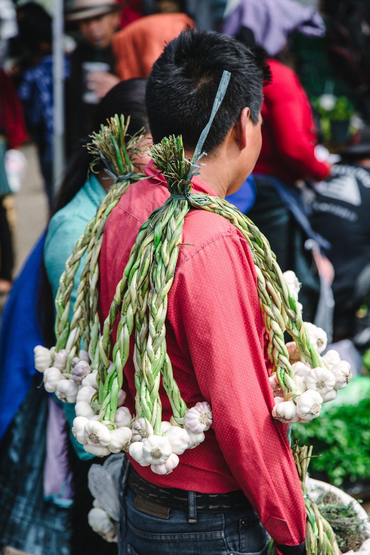 OTGxAireLibre_Chiapas2018_klinckwort-laframboise-248.jpg
