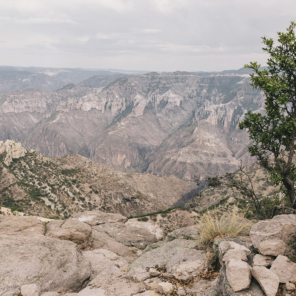 TARAHUMARA & COPPER CANYON