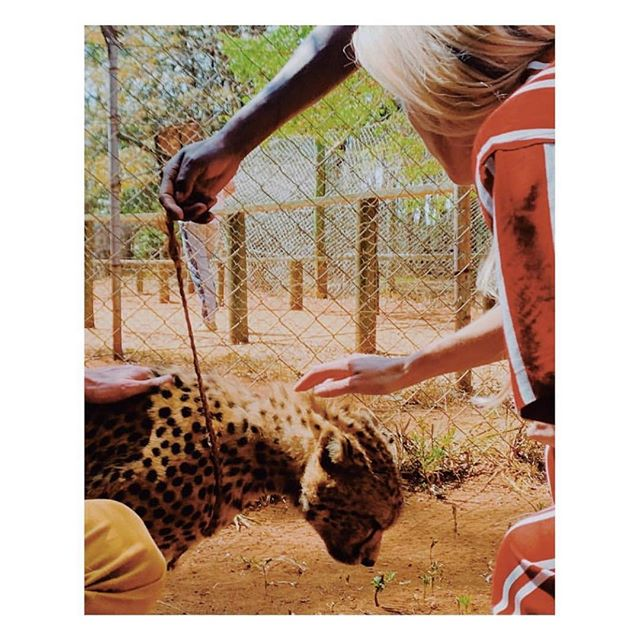 SAFARI DUO  @annachristinhaas in #TatjanaAnika  #wildlife #cheetah #swimwear #beachwear #safari