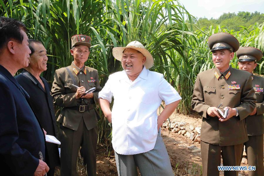 Kim+farm.jpg