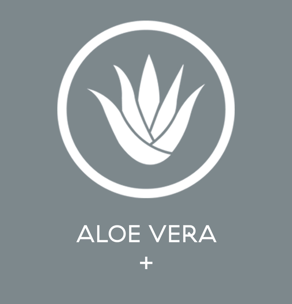 Aloe Vera - here is where you start talking about it