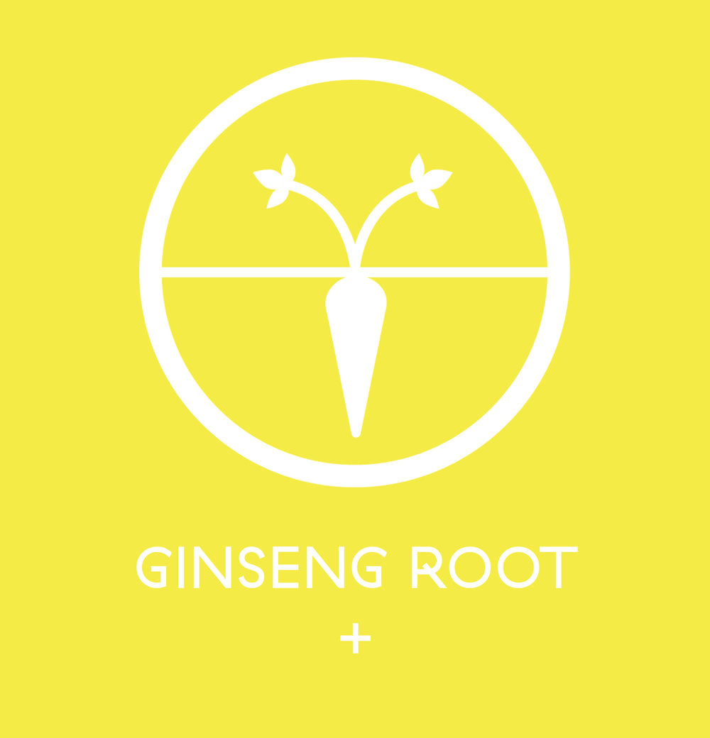 Ginseng Root - here is where you start talking about it
