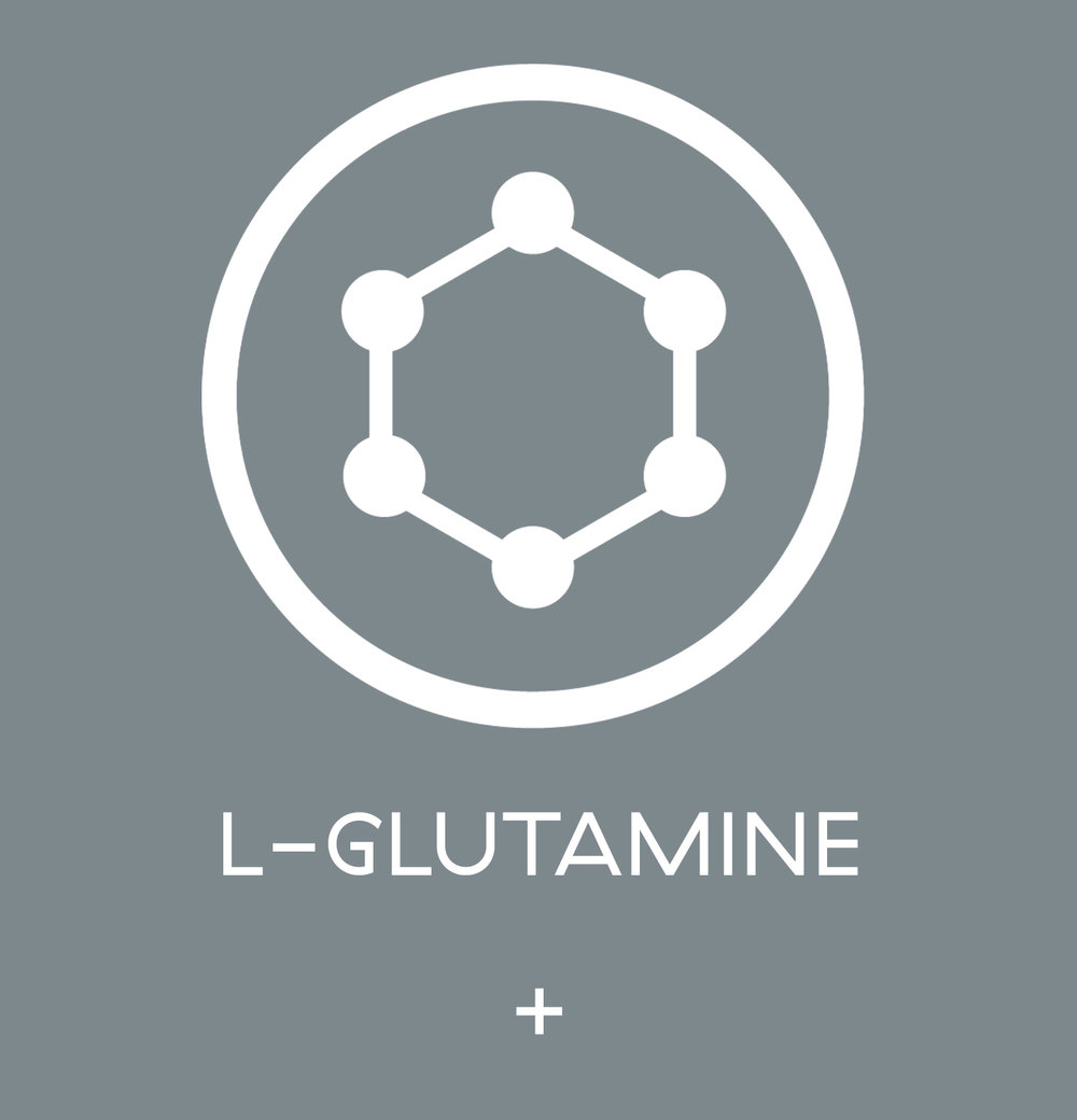 L-Glutamine - here is where you start talking about it