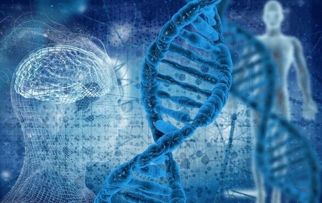 DNA%252BHelix.jpg