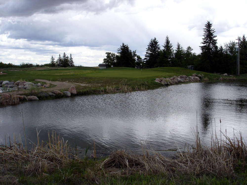 Background 1 - Overcast Pond.jpg
