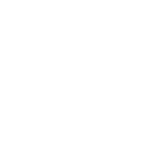flag png.png