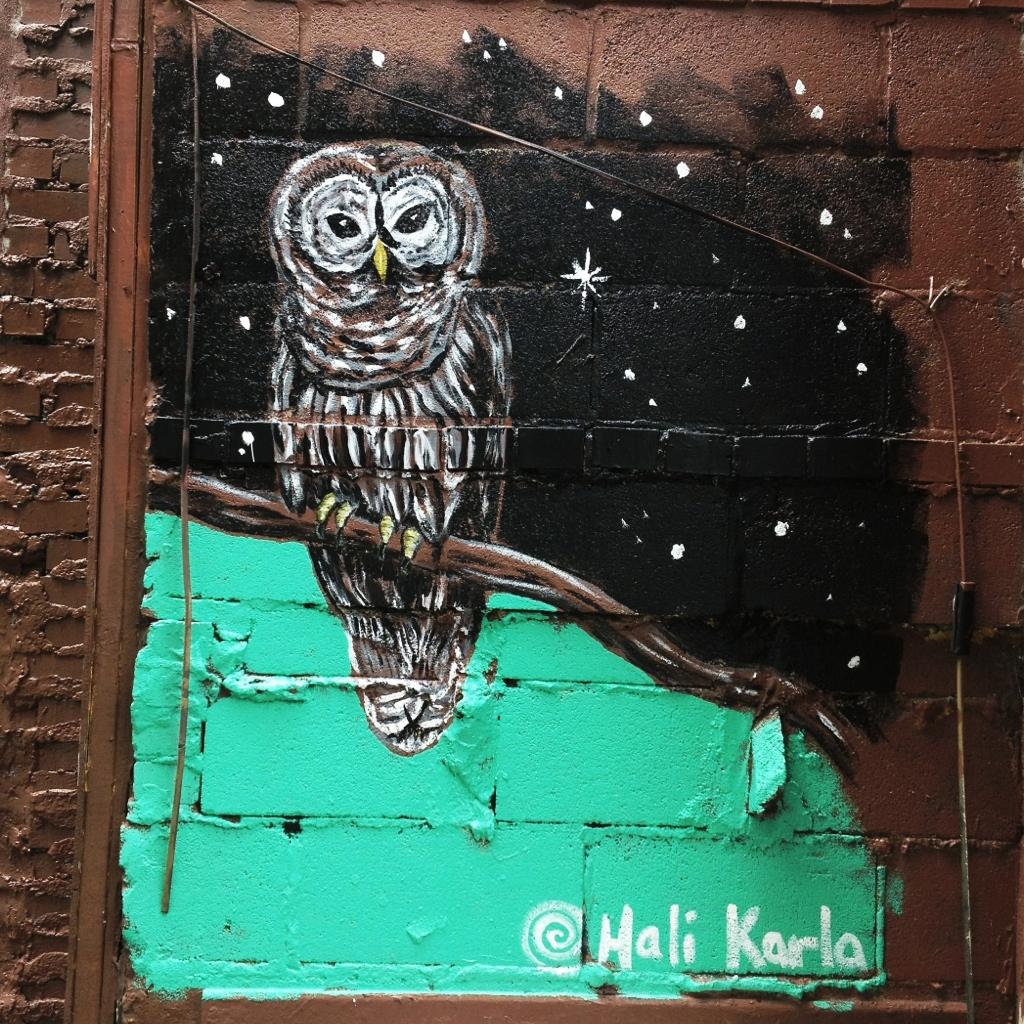 owl mural downtown asheville