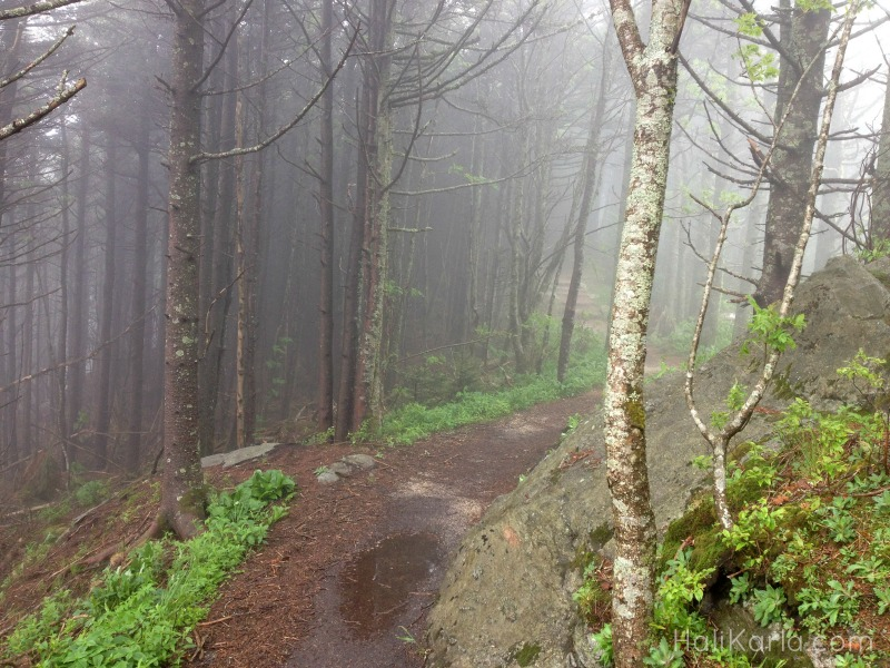 deep gap trail HaliKarla.com