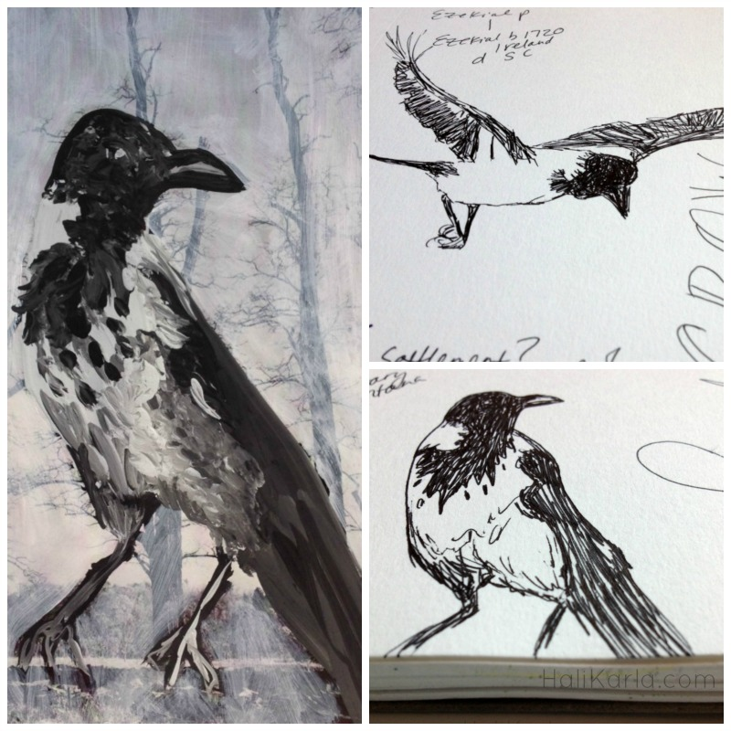 Hooded Crow, altered book art journal and sketches, HaliKarla.com