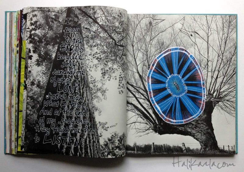altered book, Hali Karla