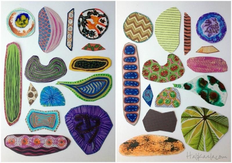 diatomcollage4