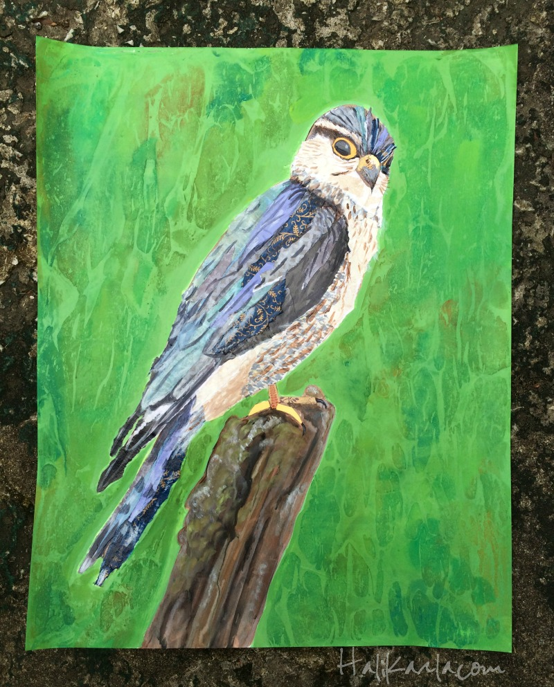 mixed media collage merlin falcon, 18x24 inches on paper, hali karla