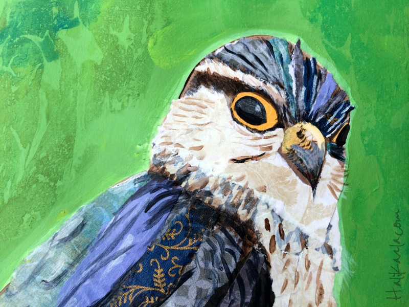 detail of mixed media collage merlin falcon by hali karla