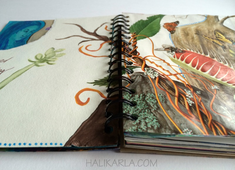 art journal detail, Hali Karla