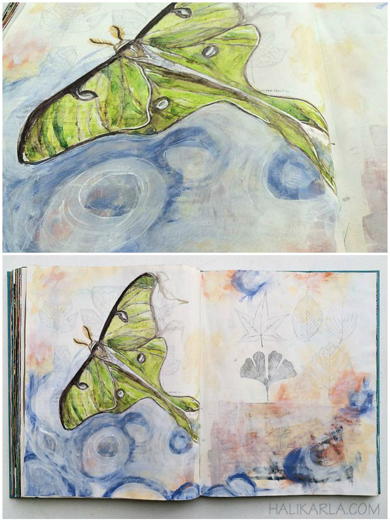 Altered book art journal study from a live luna moth. Mixed media. Hali Karla