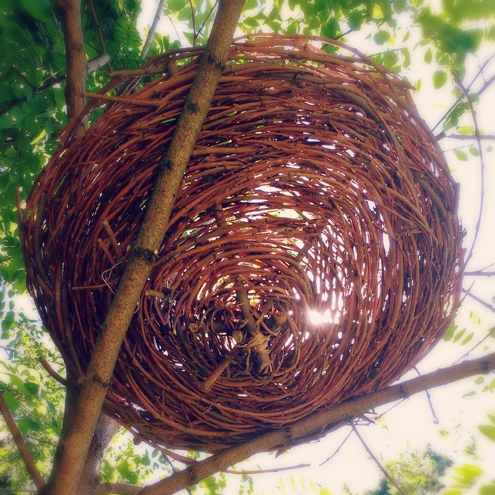 handmade nest in tree