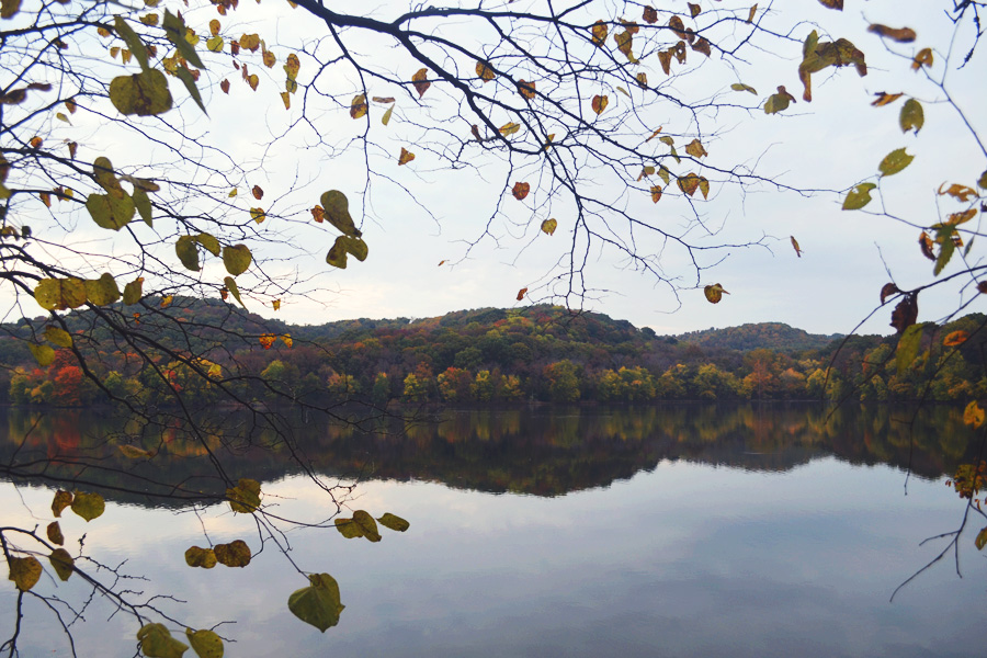 Lake Radnor Nashville