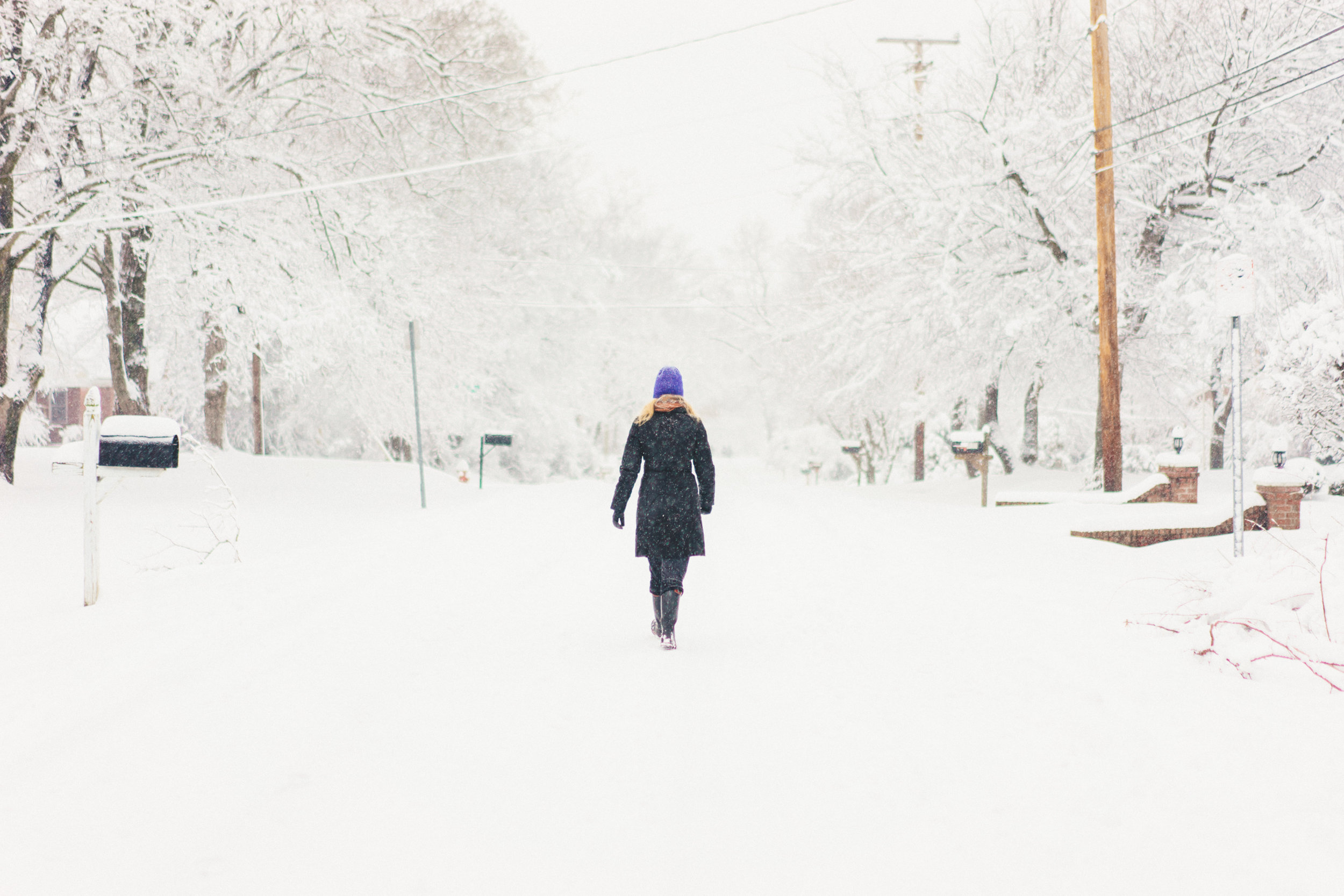 Nashville Snow 2016
