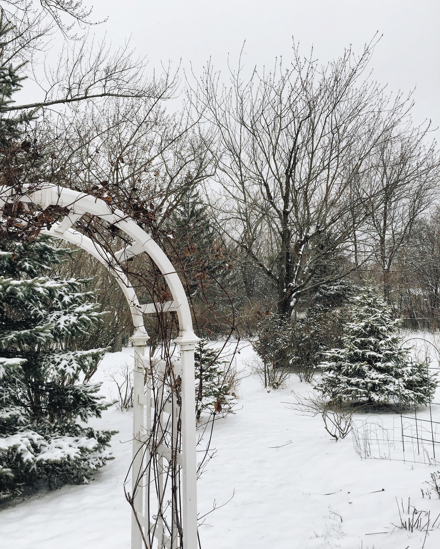 Weekend Links / / Snowed-in at Grandmas