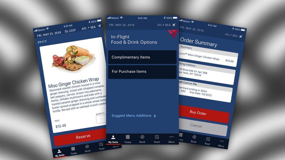 Delta Airlines (Concept) -