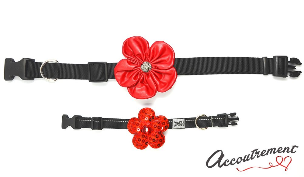 accoutrement.store collar attachments - collars front.jpg