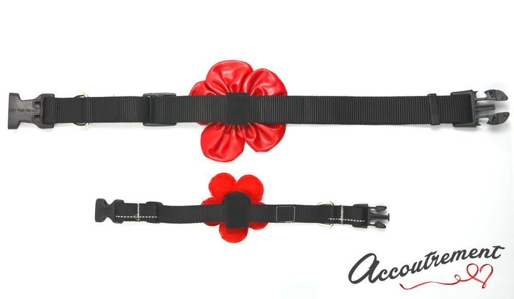 accoutrement.store collar attachments - collars back.jpg