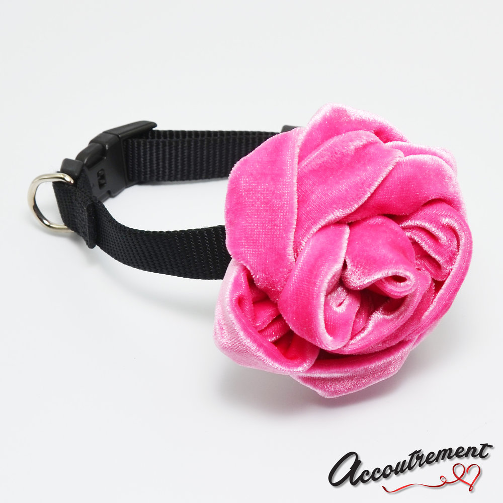 accoutrement.store flower attachment - velvet rose - pink - on collar.jpg