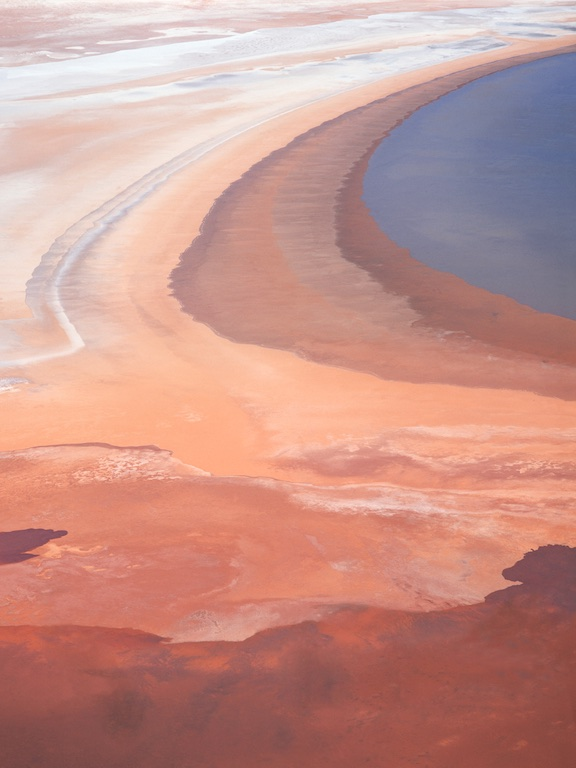 Edge of Lake Moore, central Western Australia, Australia.  The receeding water dries, causing interesting colour variations.