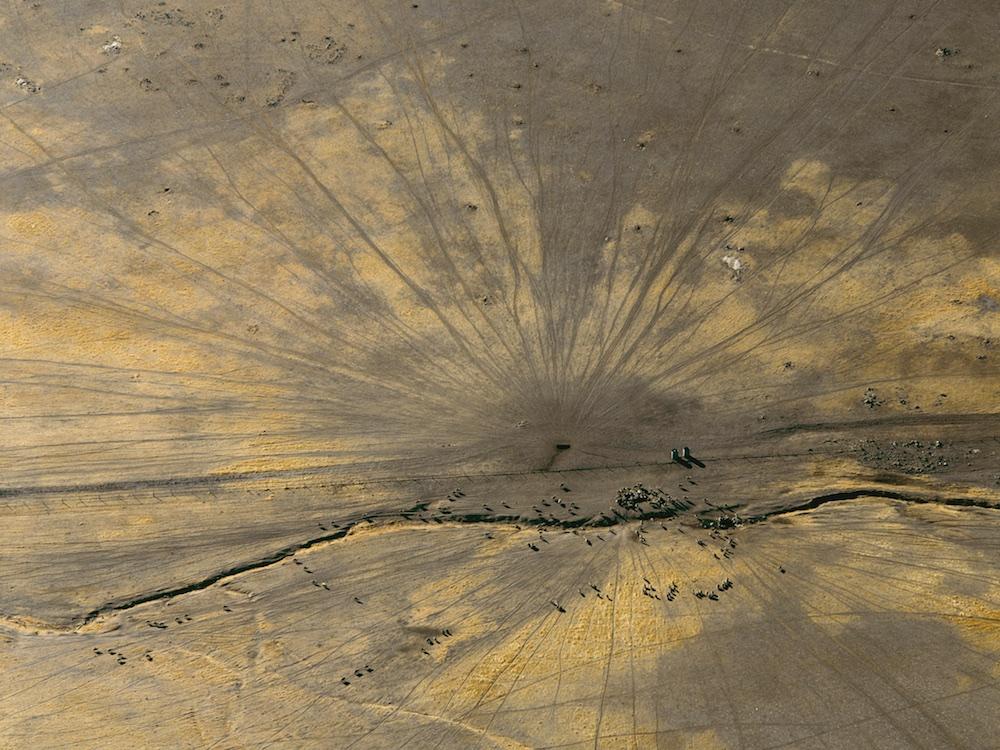 Sheep with sheep tracks, Western Australia, Australia.  Sheep tracks radiate from the water source.