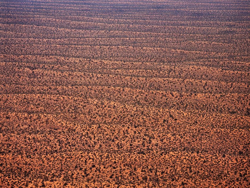 Victoria Desert, South Australia, 2000.