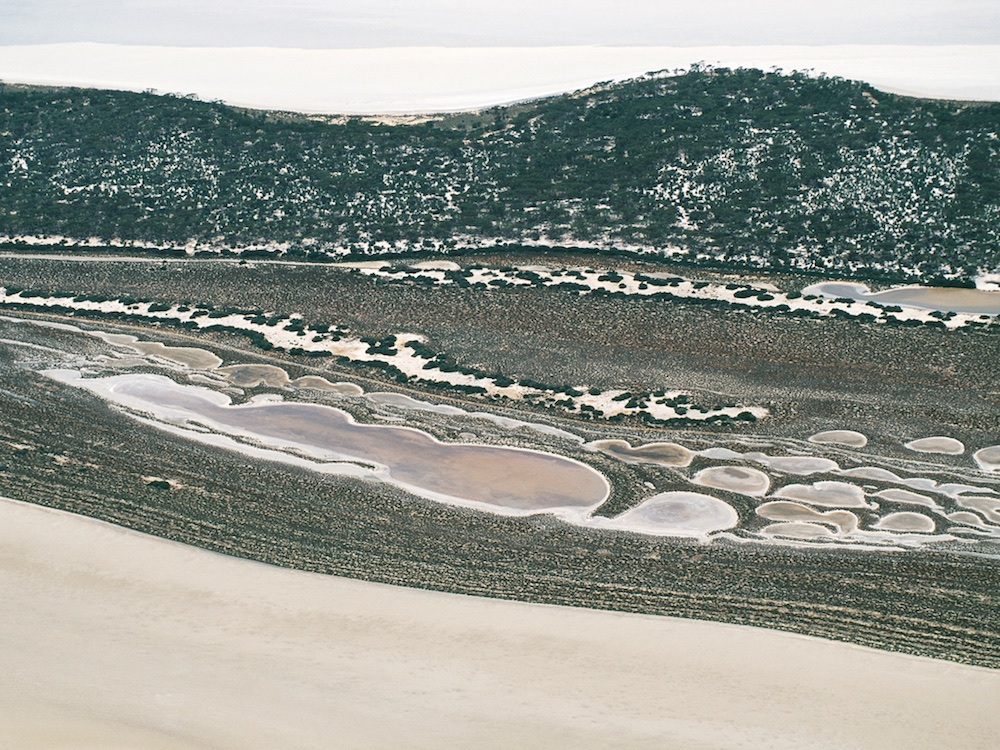 Lake Grace, Western Australia, Australia.  Salt bush edges this natural salt lake.