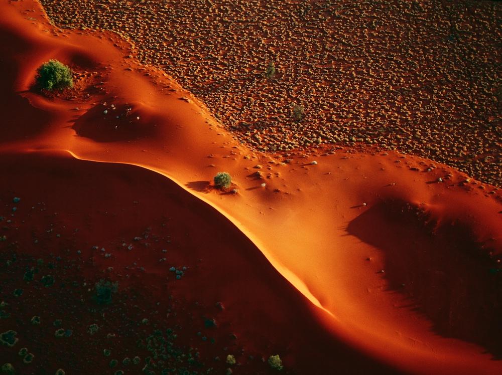 Sand dune, Windorah, Queensland, Australia.  Late light on the drifting sand dune, south east Queensland.