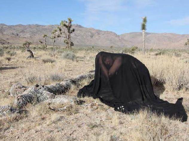 hol-black-desert.jpg