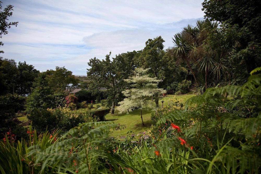 Errislannan_Garden-A.jpg