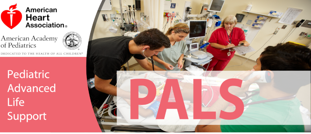 PALS Course Banner.png