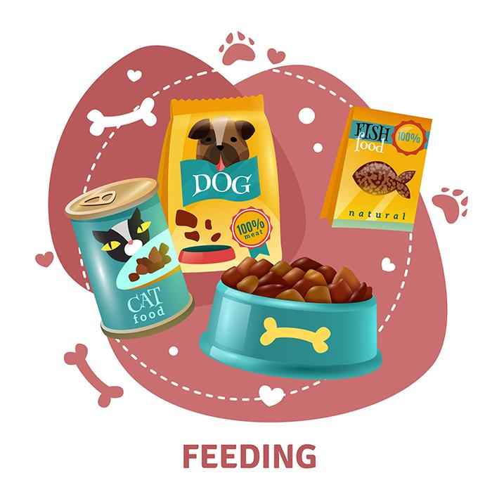 pet feeding.jpg