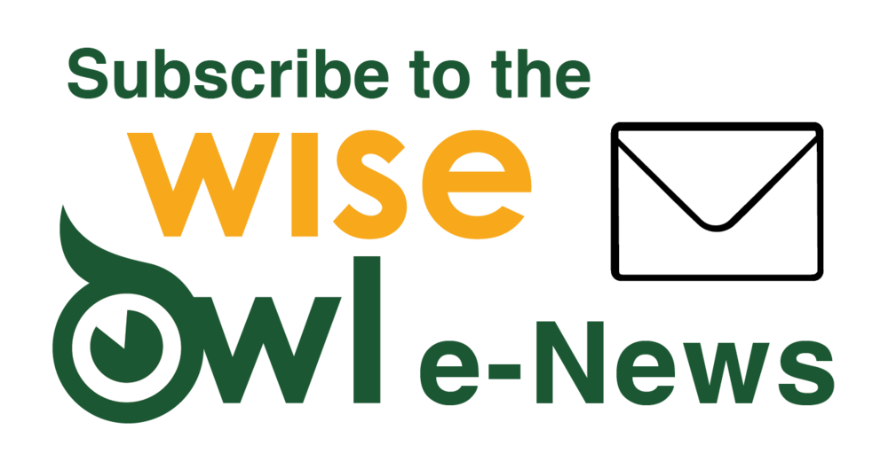 wiseowl_e-newsletter logo(1).png