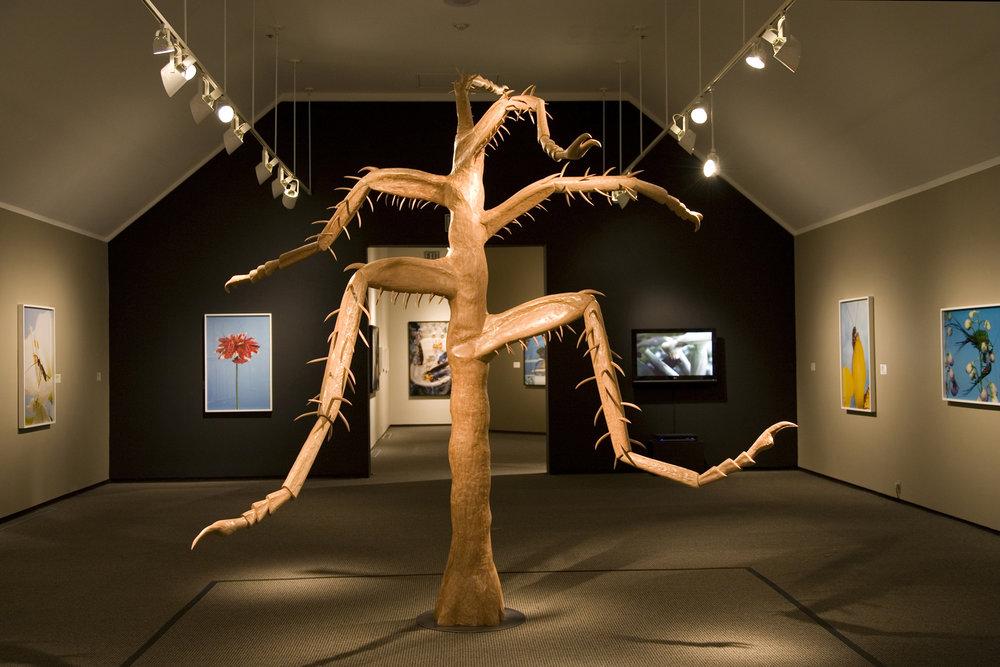 TREE, Northeastern Cherry, 11 feet tall,Boise Art Museum