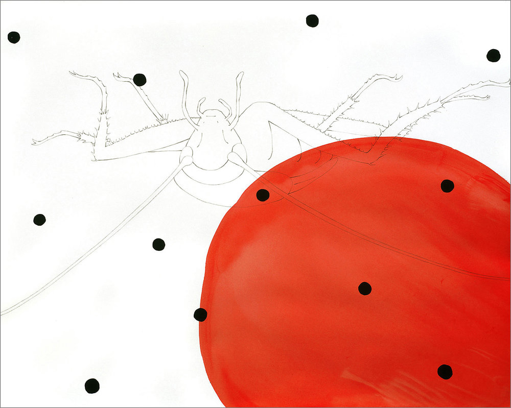 "LADY BUG, Pencil and watercolor on paper, 23""x29"""