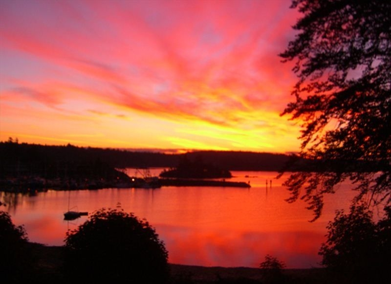 salt spring harbour sunset