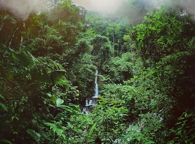 BALANCE+BLISS// Explore the lush wilderness along the Rio Seco's edge, through an enchanting series of canopy bridges that span between massive hardwood trees, and go for a refreshing swim at a beautiful waterfall pool during the Rainmaker Conservation Project hike. ~⠀⠀⠀⠀⠀⠀⠀⠀⠀ We invite you to Balance+Bliss in Costa Rica, February 25-March 3, 2019. Link in bio! ~⠀⠀⠀⠀⠀⠀⠀⠀⠀ 📷: @christopherbrenes @expedicioncostarica #regramlove⠀⠀⠀⠀⠀⠀⠀⠀⠀ ~⠀⠀⠀⠀⠀⠀⠀⠀⠀ #wellthywarriors #spiritjunkie #vibehigh #soulpreneur #yogalife #personaldevelopment #adventure #lifeadventure #wellnesswarrior #personaldevelopment #healing #selflove #radicalselflove #costarica #yycliving #yycfitness #wellthylife #wellnessretreat