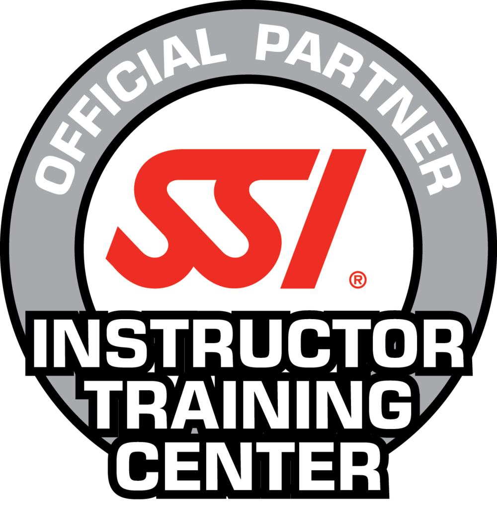 SSI_LOGO_Inst_Tr_Center_RGB.png