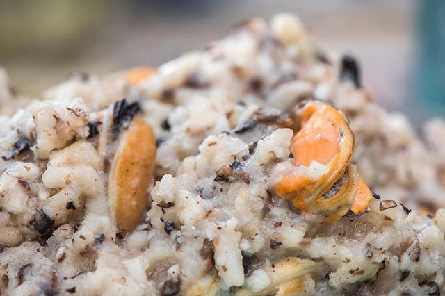 Mushroom | Mussel | Risotto . .  Sweet mussels from @patagoniamusselusa