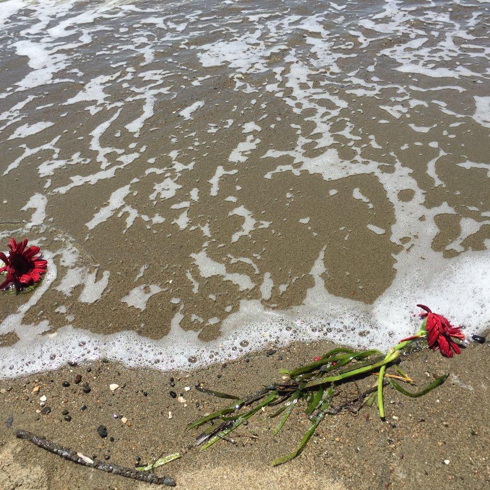 flower water 4.JPG